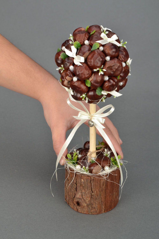 Homemade topiary Chestnuts photo 2