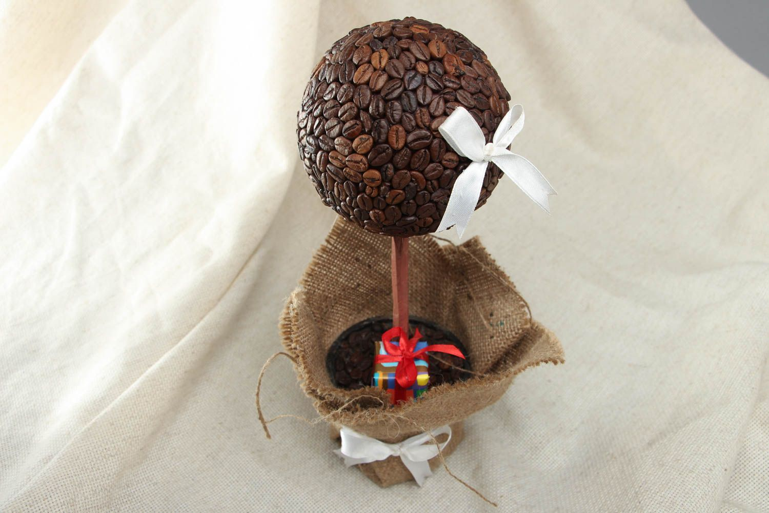 Topiary with coffee grains photo 3