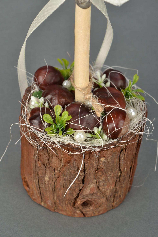 Homemade topiary Chestnuts photo 4