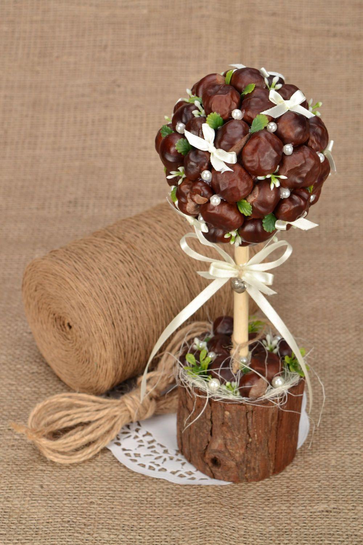 Homemade topiary Chestnuts photo 1