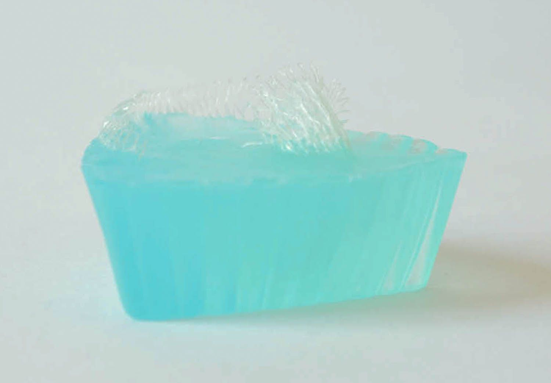Soap with a sponge photo 2