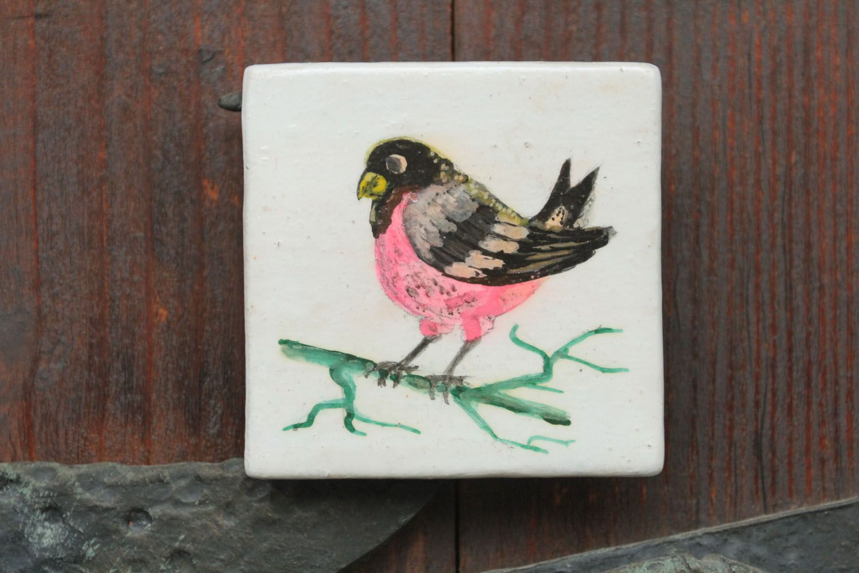 Fridge magnet Bird photo 1
