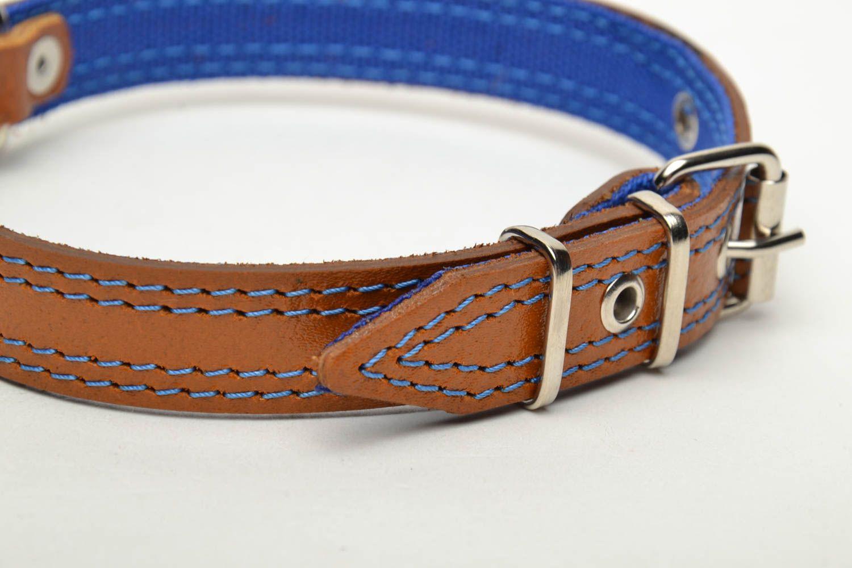 Designer dog collar photo 3