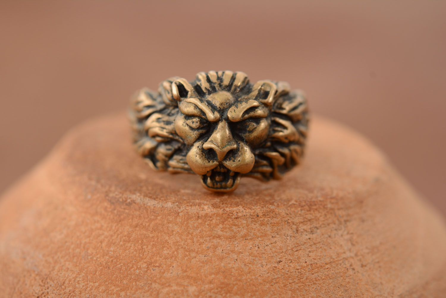 Bronze ring Scandinavian Lion photo 1