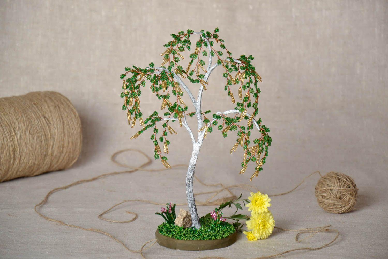 Кофейное дерево в домашних условиях. Уход. Размножение 44