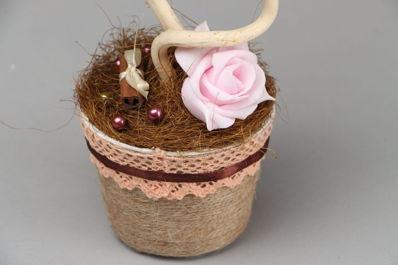 Topiary Chocolate and Cinnamon photo 3