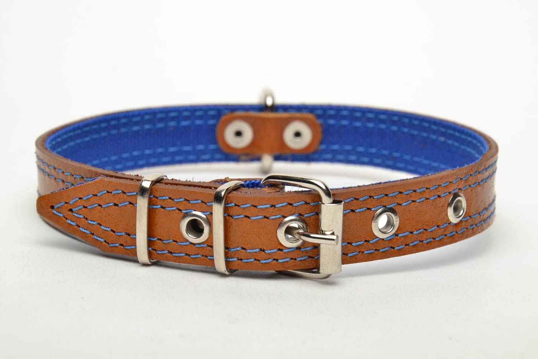 Designer dog collar photo 2