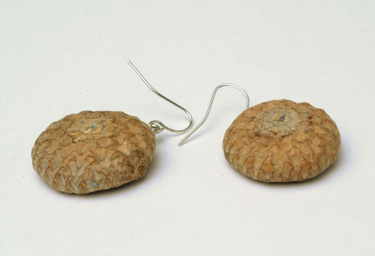 Earrings with dried flowers Acorns photo 5