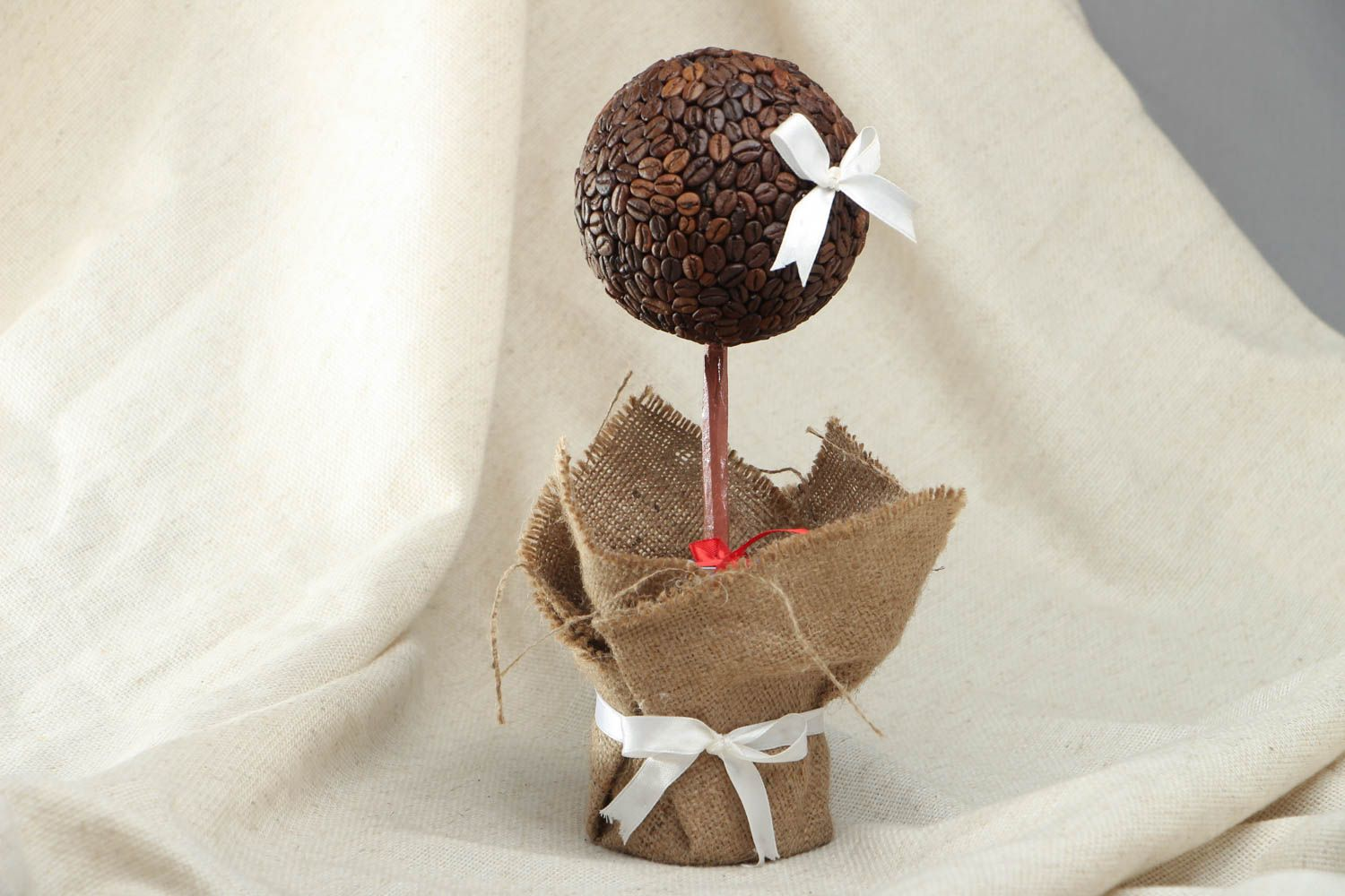 Topiary with coffee grains photo 1