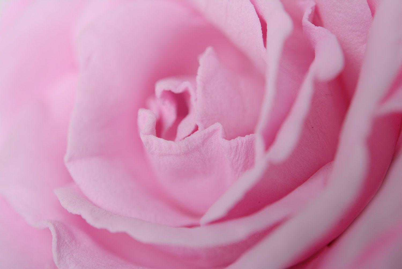 Beautiful women's handmade plastic suede flower hairpin Gentle rose photo 3