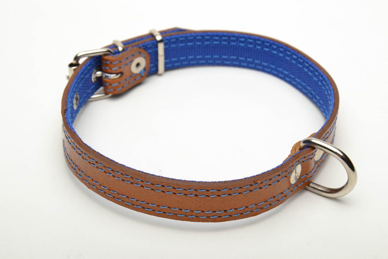 Designer dog collar photo 4