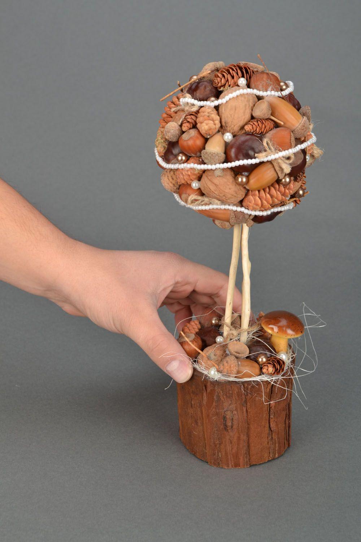 Лесные орехи своими руками 974