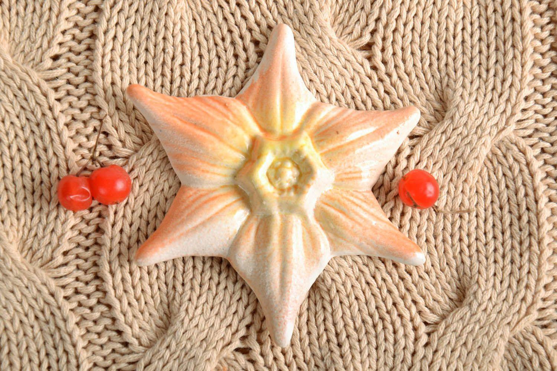 Fridge magnet Seastar photo 1
