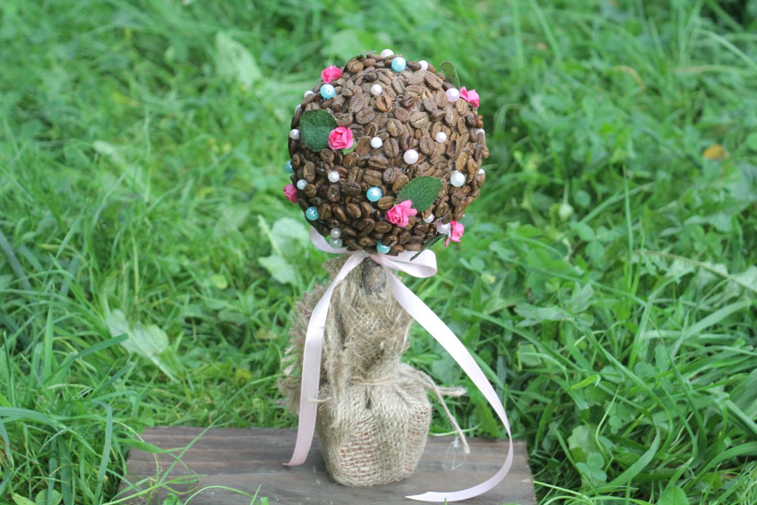 Topiary made of coffee beans photo 2