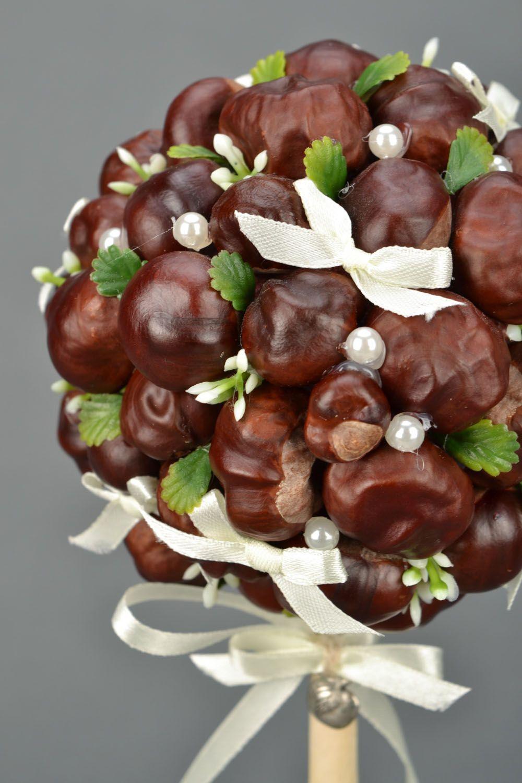 Homemade topiary Chestnuts photo 3
