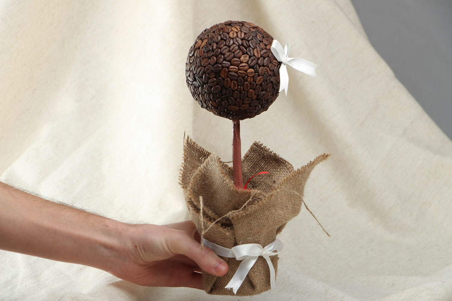 Topiary with coffee grains photo 4