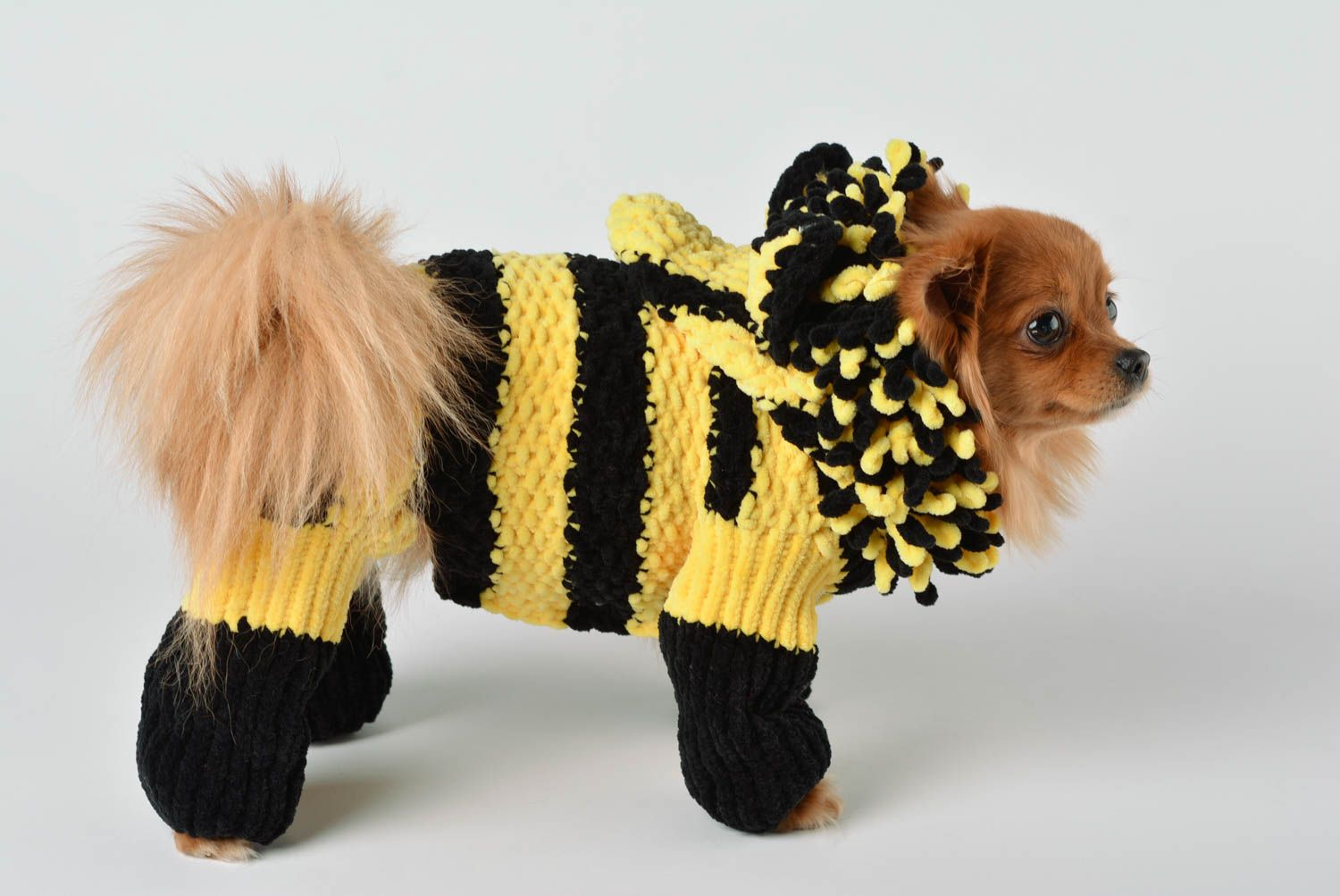 Handmade knitted suit for dogs bright designer clothes for pets cute accessory photo 3