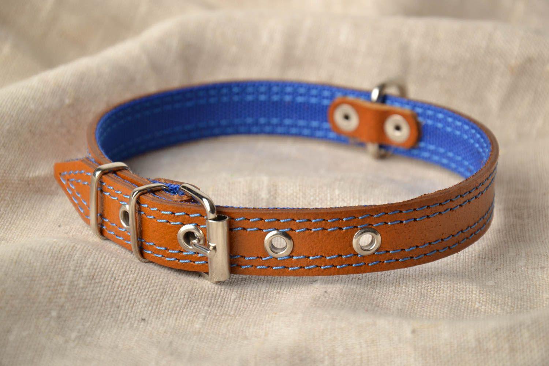 Designer dog collar photo 1