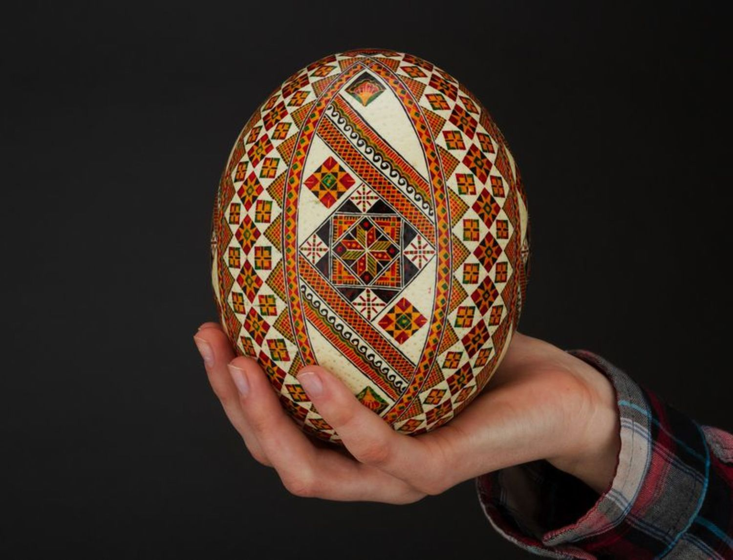 Painted ostrich egg  photo 1