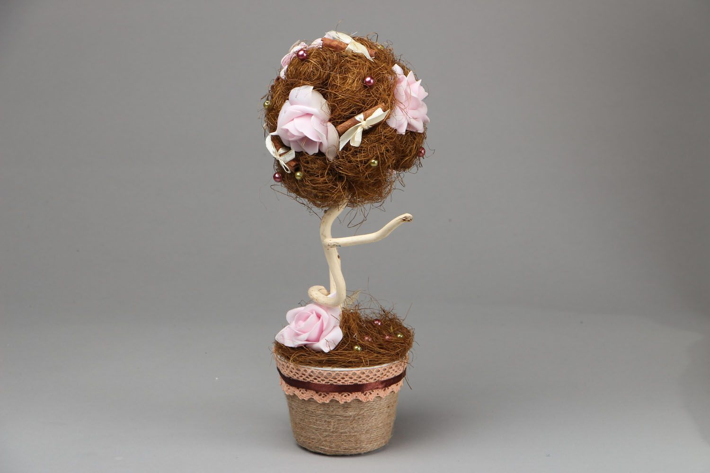 Topiary Chocolate and Cinnamon photo 1