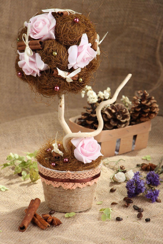 Topiary Chocolate and Cinnamon photo 5