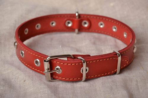 Red dog collar - MADEheart.com