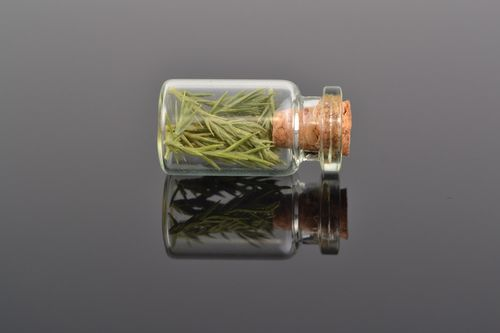 Unusual handmade pendant in the shape of glass jar with juniper inside - MADEheart.com
