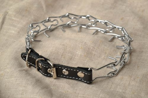 Strict metal dog collar - MADEheart.com