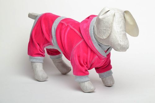 Homemade dog suit - MADEheart.com
