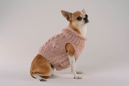Dog sweater Cozy evening - MADEheart.com