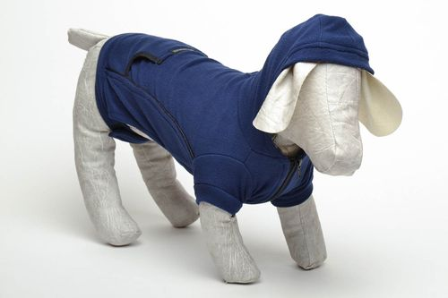 Warm clothing for dog - MADEheart.com
