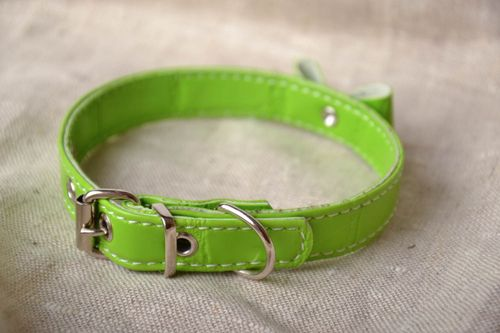Green leather dog collar - MADEheart.com