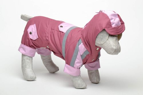 Demi-season dog suit - MADEheart.com