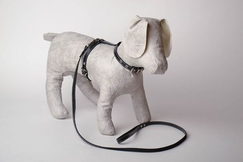 Dog harness with leash - MADEheart.com