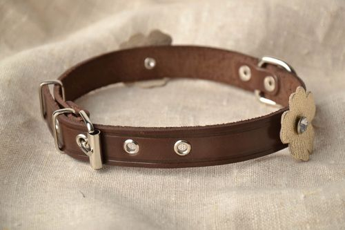 Beautiful brown collar for small dog - MADEheart.com