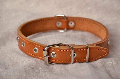 Dog collar - MADEheart.com