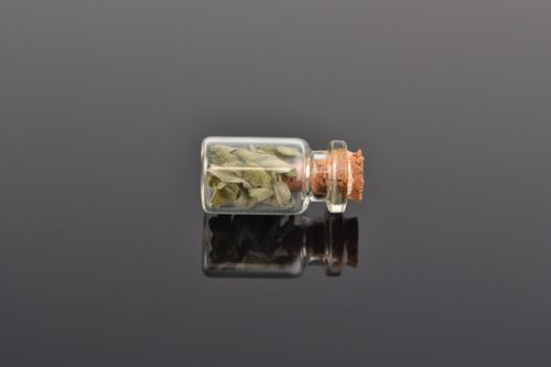 Unusual homemade neck pendant in the shape of glass flask with wormwood inside - MADEheart.com