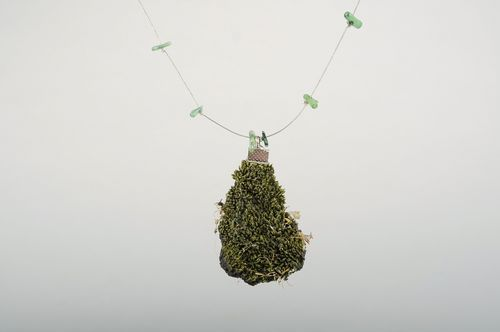 Pendant made of natural moss - MADEheart.com