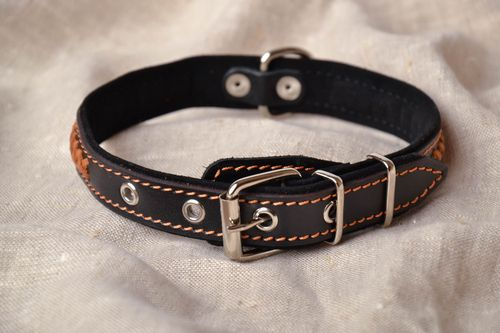 Thin dog collar of black color - MADEheart.com