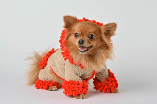 Handmade knitted clothes for dogs overalls for pets unusual accessory for dogs - MADEheart.com