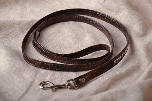 Homemade leash for pets - MADEheart.com