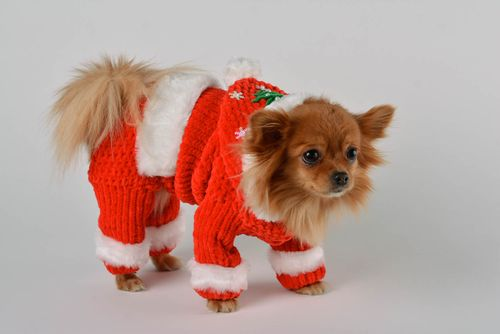 Unusual handmade crochet dog clothes dog apparel pet accessories dog outfits - MADEheart.com